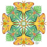 Moon and Luna Moth Mandala