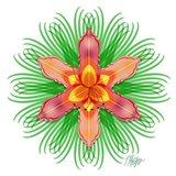 Orange Day Lily Bloom Mandala