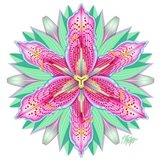 Pink and White Tiger Lily Mandala