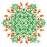 Succulent Cactus Mandala
