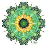 Sunflower Bloom Butterfly Mandala
