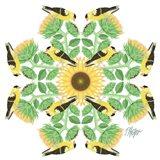 Goldfinch Sunflower Mandala