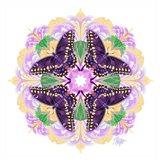 Pink Petal Swallowtail Mandala