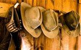 Old Hats Gun On The Wall Payson Arizona
