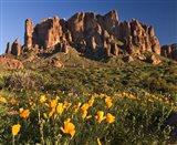 Lost Dutchman State Park Superstition Mtns