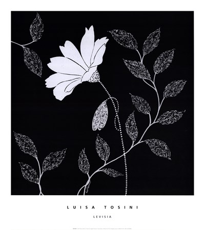 Levisia Poster by Luisa Tosini for $25.00 CAD
