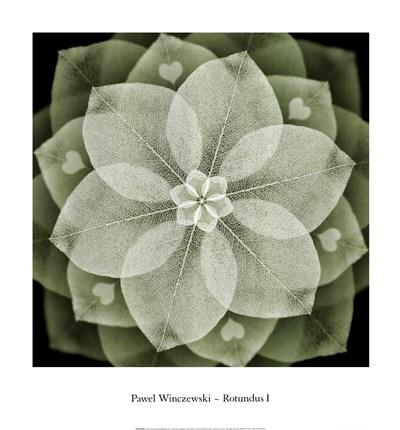 Rotundus I Poster by Pawel Winczewski for $25.00 CAD