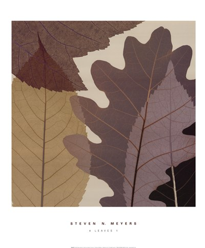 4 Leaves 1 Poster by Steven N. Meyers for $32.50 CAD