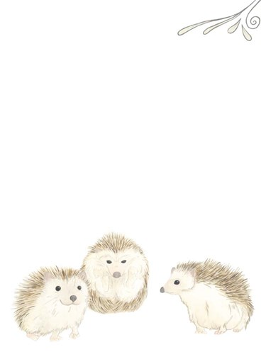 Baby Animals IV Poster by June Erica Vess for $38.75 CAD