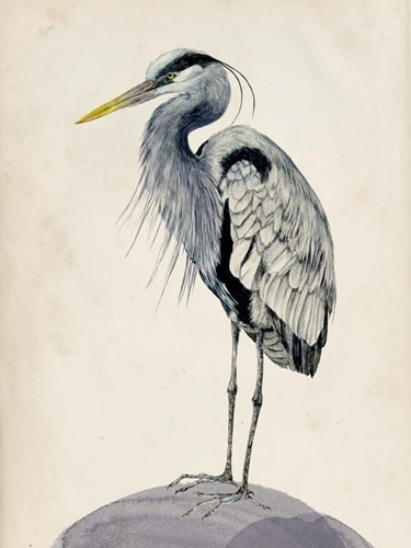 Blue Heron Rendering II Poster by Melissa Wang for $38.75 CAD