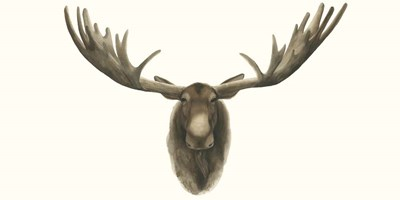 Moose Bust Poster by Grace Popp for $50.00 CAD