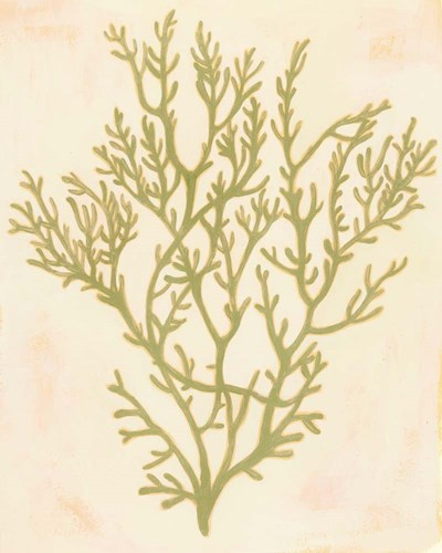 Deep Sea Coral I Poster by Grace Popp for $53.75 CAD