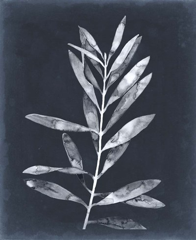 Midnight Leaves I Poster by Megan Meagher for $61.25 CAD