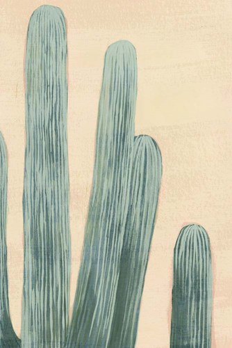 Dusty Cacti II Poster by Grace Popp for $60.00 CAD