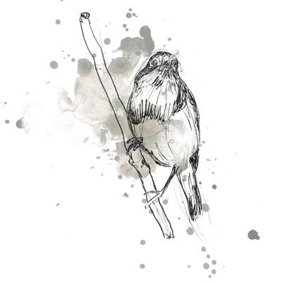 Gestural Bird Study III Poster by June Erica Vess for $32.50 CAD