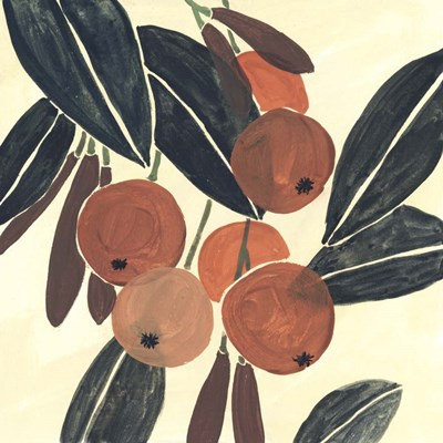 Kumquat I Poster by Melissa Wang for $53.75 CAD