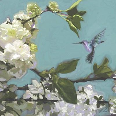 Hummingbird Florals I Poster by Rick Novak for $53.75 CAD