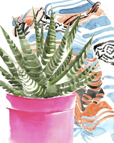 Zebra Succulent II Poster by Jennifer Parker for $53.75 CAD