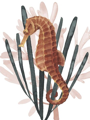 Seahorse Treasures II Poster by Grace Popp for $38.75 CAD