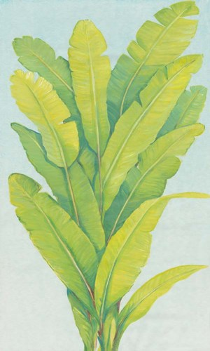Chartreuse Tropical Foliage II Poster by Timothy O'Toole for $73.75 CAD