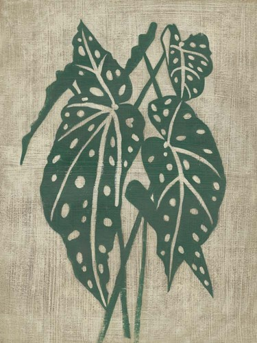 Vintage Greenery II Poster by Chariklia Zarris for $63.75 CAD