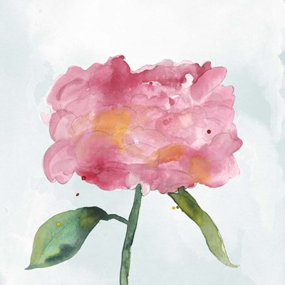 Joyful Peony IV Poster by Alicia Ludwig for $46.25 CAD