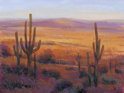 Desert Light II Poster by Timothy O'Toole for $38.75 CAD