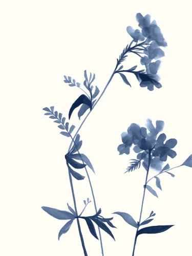Indigo Wildflowers II Poster by Jennifer Goldberger for $38.75 CAD