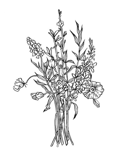Black & White Bouquet IV Poster by Emma Scarvey for $53.75 CAD