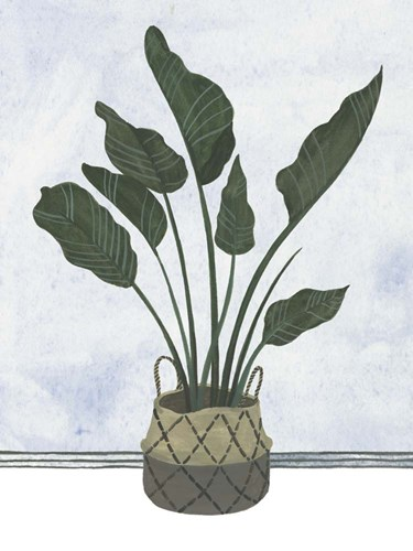 Mes Plants III Poster by Melissa Wang for $38.75 CAD