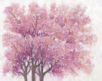 Pink Cherry Blossom Tree I Poster by Timothy O'Toole for $53.75 CAD