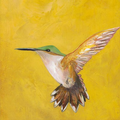 Sweet Hummingbird II Poster by Mehmet Altug for $32.50 CAD
