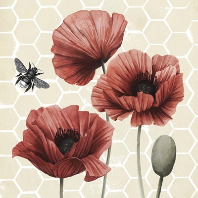 Poppy Buzz I Poster by Grace Popp for $32.50 CAD