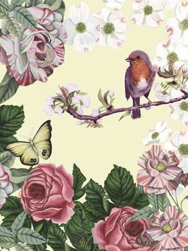 Bird Garden II Poster by Naomi McCavitt for $38.75 CAD