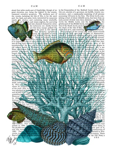 Fish Blue Shells and Corals Poster by Fab Funky for $38.75 CAD