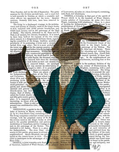 Hare In Turquoise Coat Poster by Fab Funky for $38.75 CAD