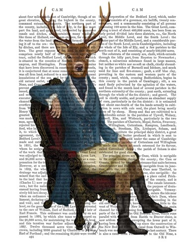 Distinguished Deer Full Poster by Fab Funky for $38.75 CAD