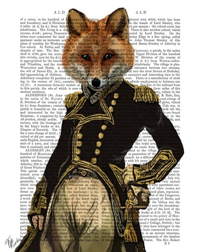 Admiral Fox Full I Poster by Fab Funky for $38.75 CAD