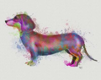 Dachshund Rainbow Splash 1 Poster by Fab Funky for $33.75 CAD
