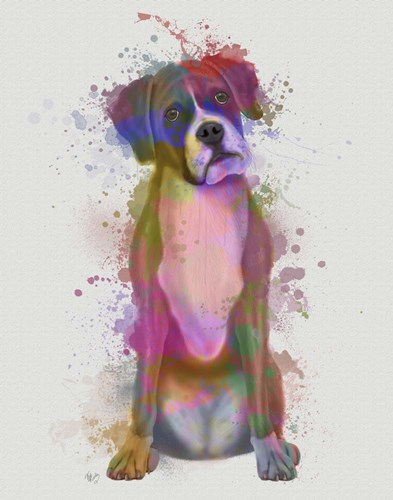 Boxer 1 Full Rainbow Splash Poster by Fab Funky for $33.75 CAD