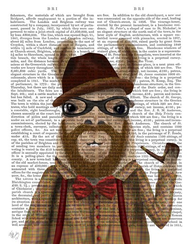 Bearded Llama Poster by Fab Funky for $33.75 CAD