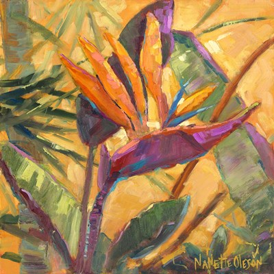 Splash of the Tropics I Poster by Nanette Oleson for $53.75 CAD