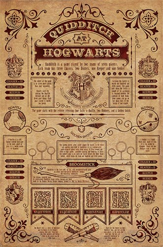 Harry Potter - Quidditch Info Poster by Unknown for $12.50 CAD