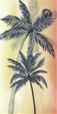 Vintage Palms II
