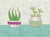 Succulent Duo I