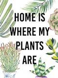 Plant Love VI