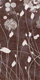 Botany Expressions VII