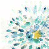 Starburst Floral II