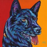 Dogs in Color I