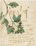 Herb Study V